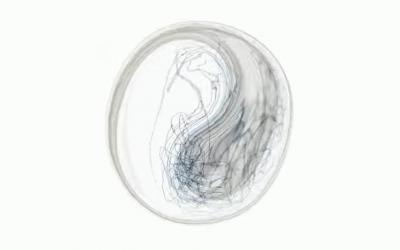 Christian Löffler – Young Alaska ( Full Album )