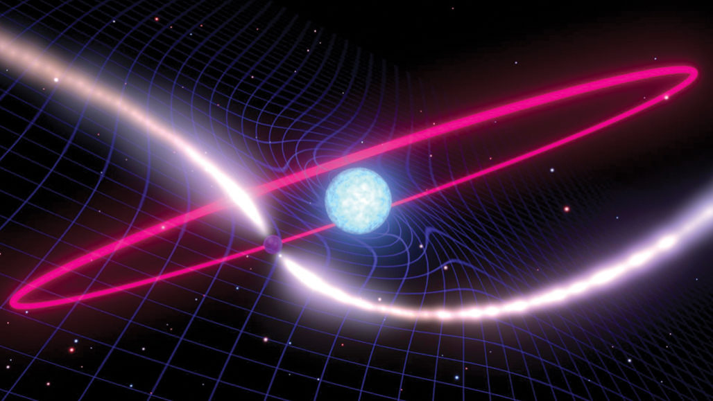 A white dwarf (illustrated, center) twists spacetime as it spins, forcing the orbit (pink) of a neighboring pulsar (illustrated with radio jets) to wobble. MARK MYERS/ARC CENTRE OF EXCELLENCE FOR GRAVITATIONAL WAVE DISCOVERY (OZGRAV)