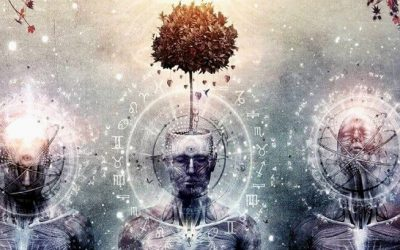We are endowed with an inner light processor – the pineal gland